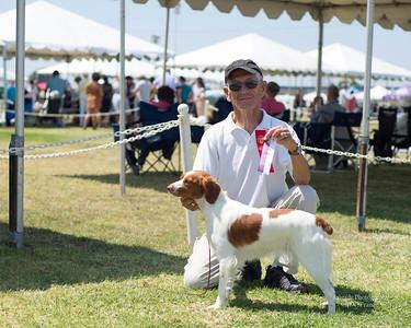 Breeder Owner Handler Mike Frane with Annie, Brigade's Deja Vu Angel