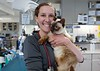 spay-day-seattle-wa-cat-veterinary-service