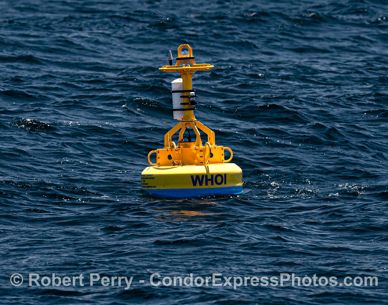 """""""Whale Safe"""" buoy that detects the presence of whales and large commercial cargo vessels in the Santa Barbara Channel. A joint venture between Woods Hole Oceanographic Institution, UCSB, Texas A&M, U o Washington, and NOAA."""