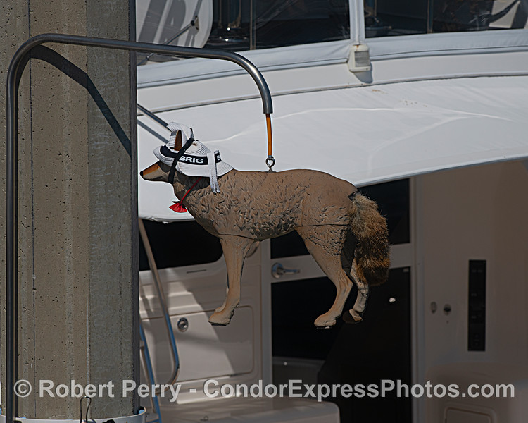 """. A plastic """"scarecrow"""" replica that scares pooping birds away from yachts."""