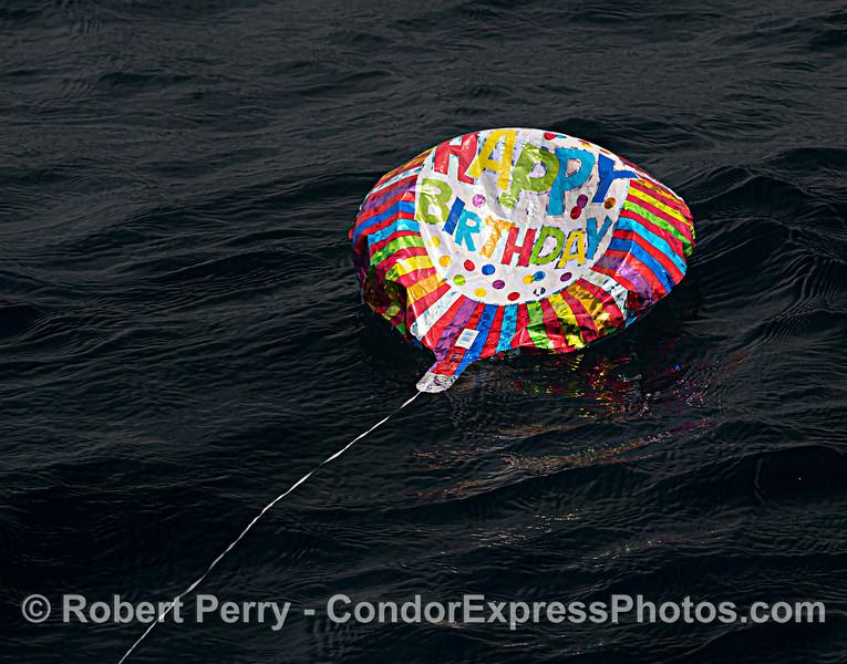 balloon debris Mylar Happy Birthday 2021 08-11 SB Channel--021
