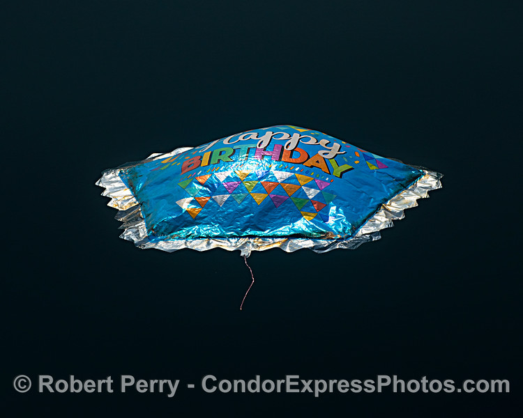 balloon mylar deflated on surface 2021 08-13 SB Channel -West--016