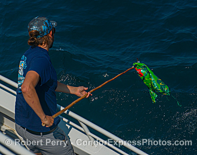 Deckhand Devin puts the gaff on the watermelon balloon trash