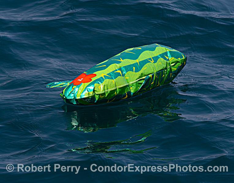 """A """"watermelon?"""" deflated Mylar helium balloon on the ocean surface."""