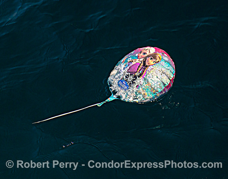 """A deflated, floating Mylar helium """"Frozen"""" balloon on the ocean surface. Soon to be removed by the crew."""