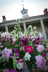Photo by Tony Powell. Becoming Mount Vernon. June 6, 2021