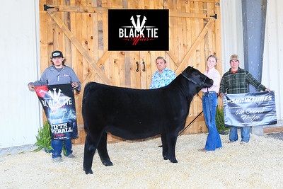 5th_Heifer_Ch_Maintainer_MB21-BT-7274