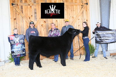 1_Ch_Steer_Ch_Middle_Cross_MB21-BT-7213