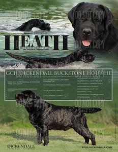 HeathAd(Toprint)1