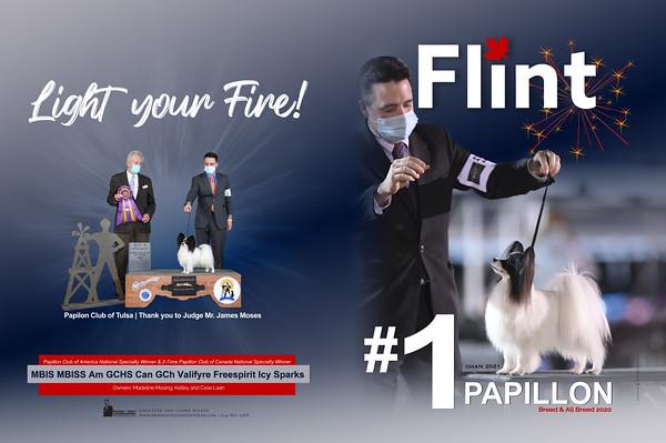 FLINT(February2021)a