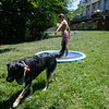 Sprinkler pool-008