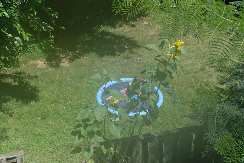 Sprinkler pool-001