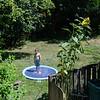 Sprinkler pool-003
