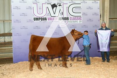 MWB21-UVJC-7593