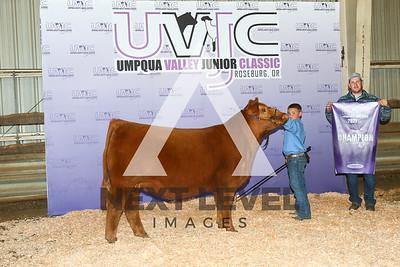 MWB21-UVJC-7591