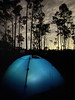 Everglades National Park. Lights of Miami. Long Pine Key campground.