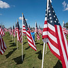 210910 NT Flags 1<br /> James Neiss/staff photographer <br /> North Tonawanda, NY - Angie Vernas a volunteer with the Erie Niagara Sunrise Exchange Club stands among more than 2000 flags the organization planted as part their Healing Field Patriotic Flag Display at Gratwick Riverside Park.