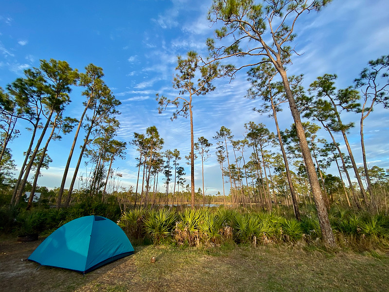 Long Pine Key Campground Everglades National Park