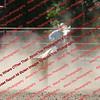 AFN-8_29_16 - BR - 000015