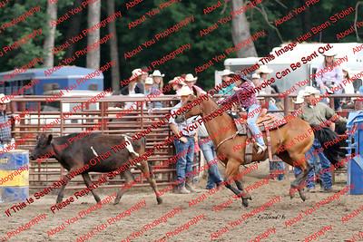 Steer Dobbing