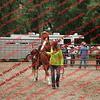 Ant-7 9 16-0-4 Goats - 00040
