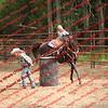 Ant-7 9 16-0-4 Barrels - 00028