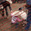 Ant-7 9 16-0-4 Goats - 00020