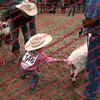 Ant-7 9 16-0-4 Goats - 00019