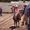 Ant-7 9 16-0-4 Goats - 00016
