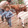 Ant-7 9 16-0-4 Goats - 00104