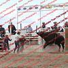 BLAIS-16-Perf Bull = 00008
