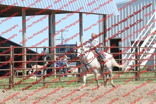 BYR2016 Goats = 01291