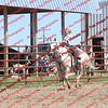 BYR2016 Goats = 01292