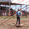 BYR2016 Goats = 00310