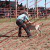 BYR2016 Goats = 00309