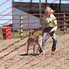 BYR2016 Goats = 00942