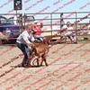 BYR2016 Goats = 01301