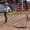 BYR2016 Goats = 00305