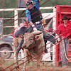 GPR-Sat Perf - Bull - 00013