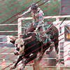 GPR-Sat Perf - Bull - 00019