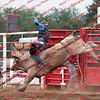 GPR-Sat Perf - Bull - 00011