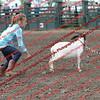SLYR16-GoatUT-00061