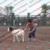 SLYR16-GoatUT-00071