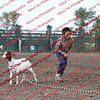 SLYR16-GoatUT-00072