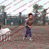SLYR16-GoatUT-00073