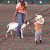 SLYR16-GoatUT-00028
