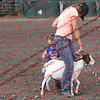SLYR16-GoatUT-00016