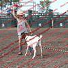 SLYR16-GoatUT-00085