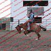 SLYR16-Pony- 00015