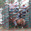 SLYR16-Pony- 00002